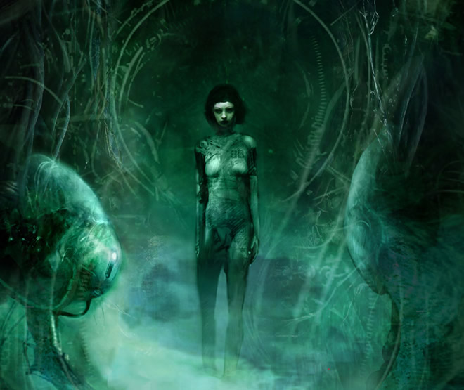 art illustrations by Christopher Shy